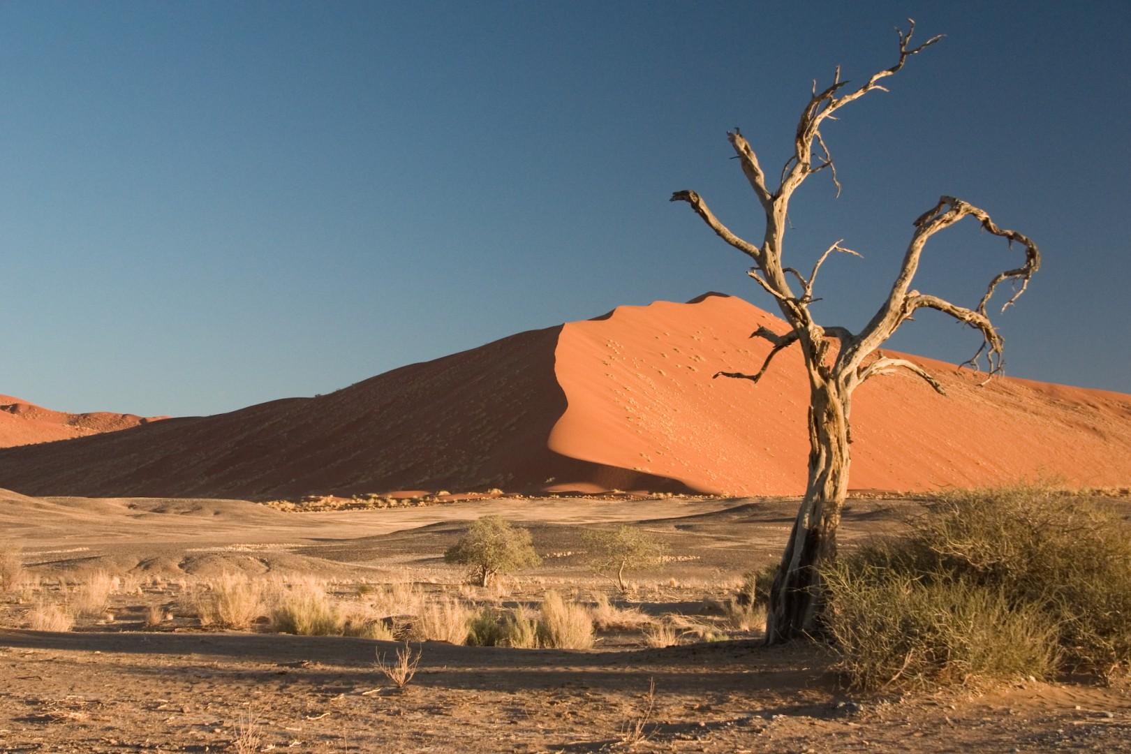 I to dagar og to netter var Jack i ørkenen utan mat og drikke