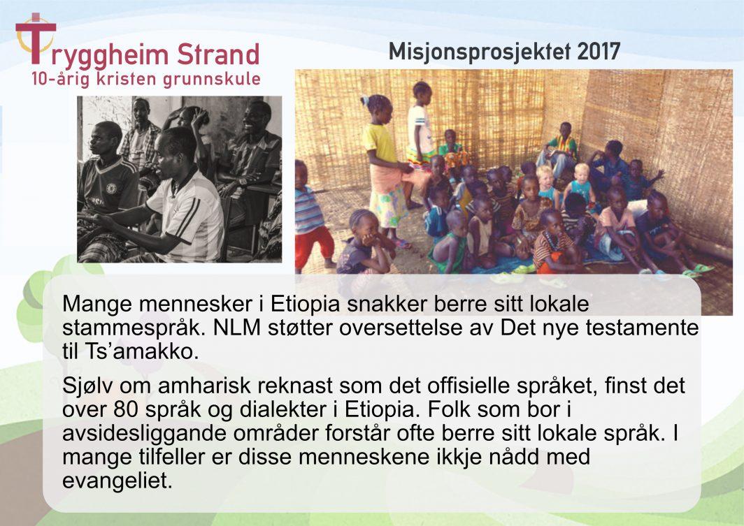 Misjonsprosjekt lodd bakside 2017